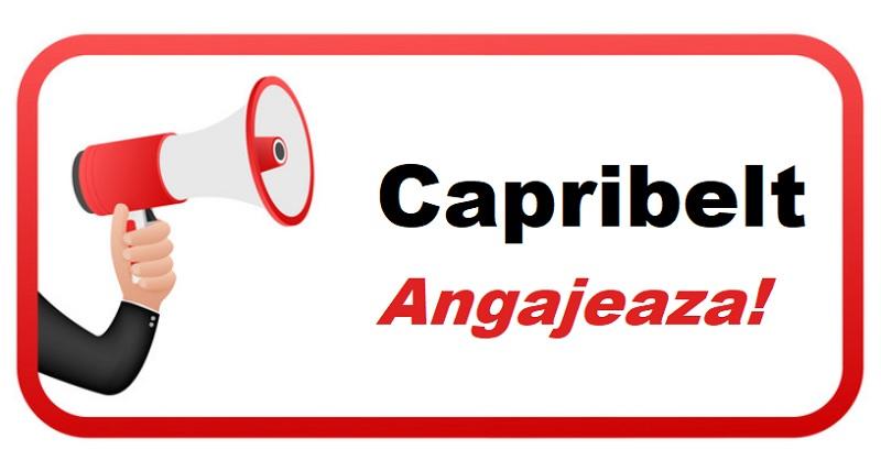 Anunt angajare Capribelt
